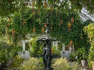 The-New-York-Botanical-Garden